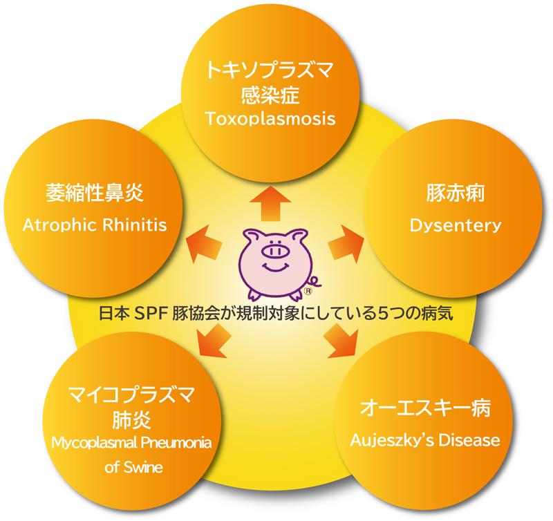 5つの病気
